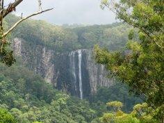 Minyon Falls - Nightcap Range