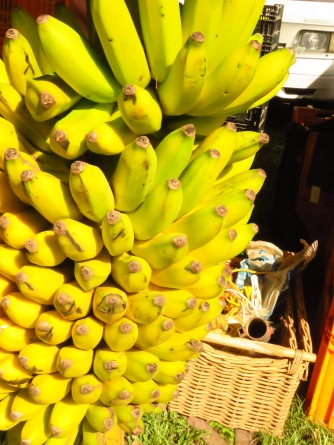 Fresh local bananas