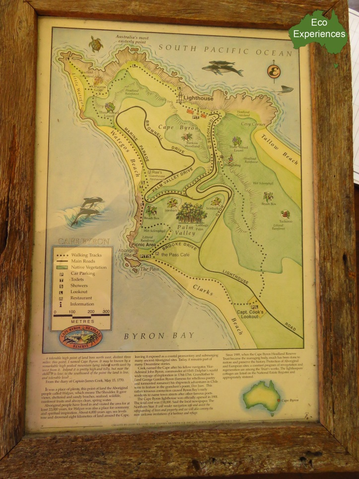 Cape Byron Walking Trail Map