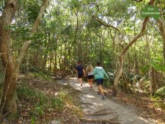 Walk anti closewise on the Cape Byron Track
