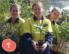 Community Big Scrub Planting