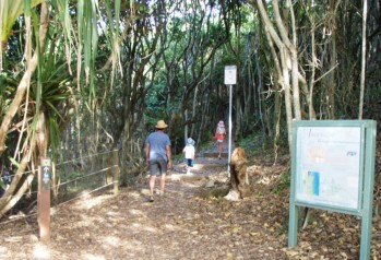 Three Sisters Walking Track - Photo byron4kids.com