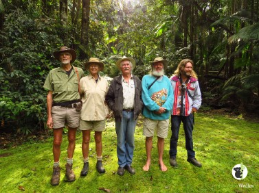Rainforest protectors